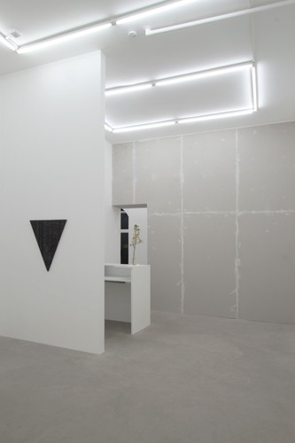 http://www.mikkelcarl.com/files/gimgs/th-110_040_Mikkel-Carl_Installation-view_v2.jpg