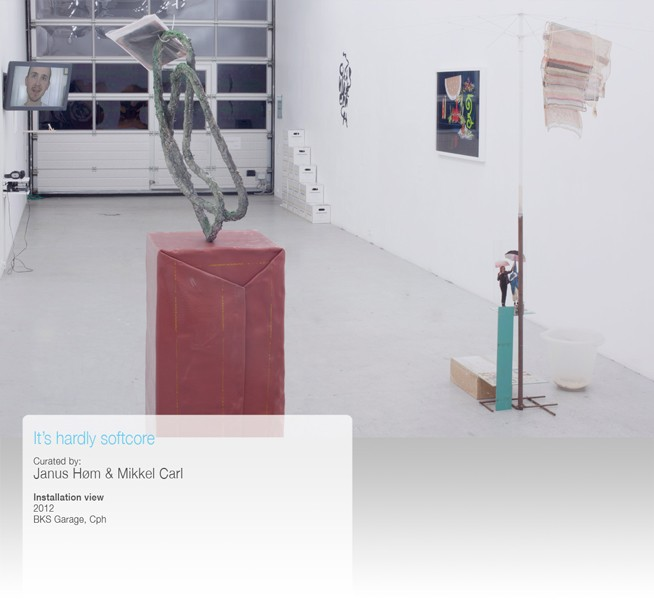 http://www.mikkelcarl.com/files/gimgs/th-34_008-Installation-view.jpg