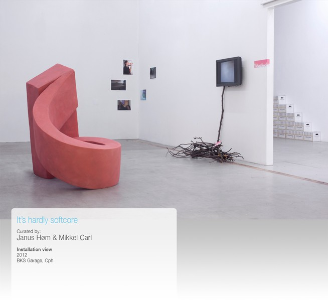 http://www.mikkelcarl.com/files/gimgs/th-34_014-Installation-view_v2.jpg