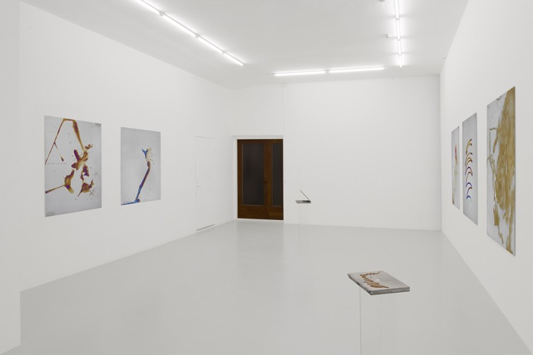 http://www.mikkelcarl.com/files/gimgs/th-84_005_Mikkel-Carl_installation-view.jpg