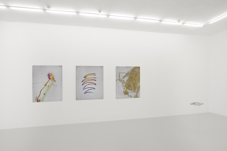 http://www.mikkelcarl.com/files/gimgs/th-84_006_Mikkel-Carl_installation-view.jpg