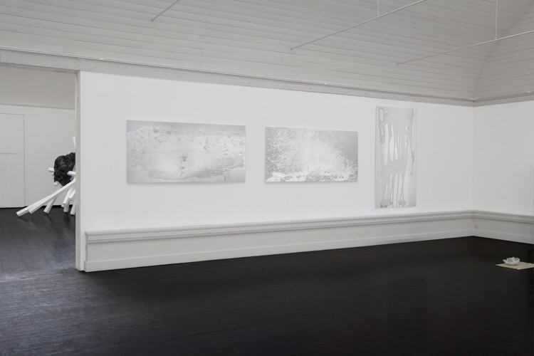 http://www.mikkelcarl.com/files/gimgs/th-89_006_installation-view.jpg