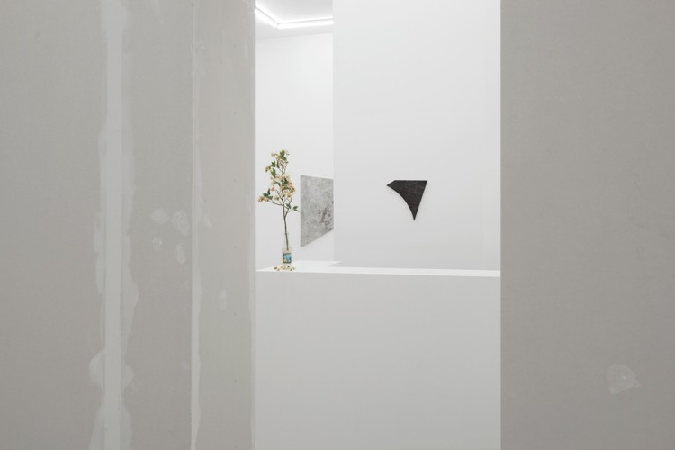 http://www.mikkelcarl.com/files/gimgs/th-89_025_Mikkel-Carl_Installation-view.jpg