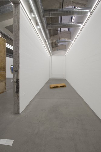 http://www.mikkelcarl.com/files/gimgs/th-89_029_installation-view.jpg