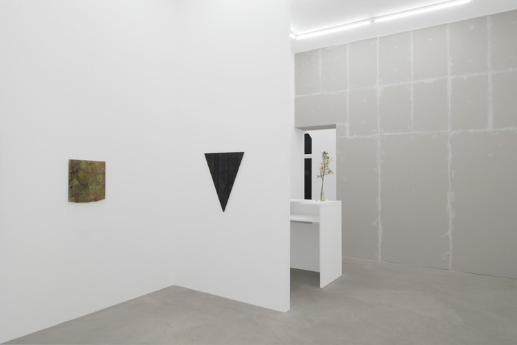 http://www.mikkelcarl.com/files/gimgs/th-89_036_Mikkel-Carl_Installation-view.jpg