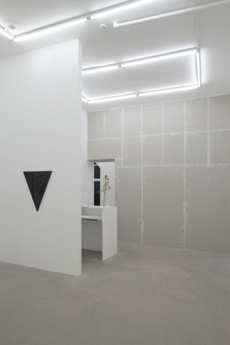 http://www.mikkelcarl.com/files/gimgs/th-89_040_Mikkel-Carl_Installation-view.jpg